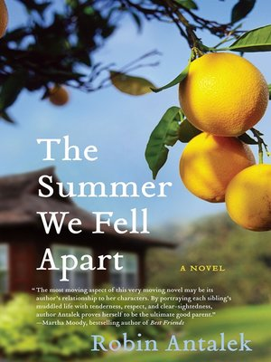 Click this cover for a(n) eBook sample of The Summer We Fell Apart