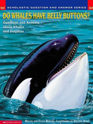 Do Whales Have Belly Buttons?