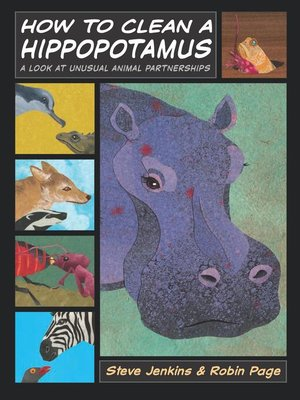 Click this cover for a(n) eBook sample of How to Clean a Hippopotamus