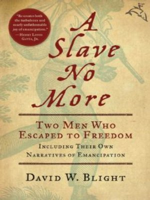 Click this cover for a(n) eBook sample of A Slave No More.