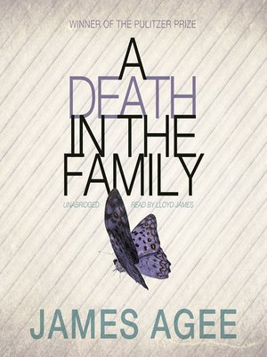 Click this cover for a(n) Audiobook sample of A Death in the Family