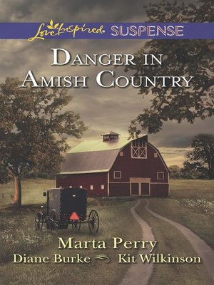 Click this cover for a(n) eBook sample of Danger in Amish Country: Fall from Grace\Dangerous Homecoming\Return to Willow Trace.