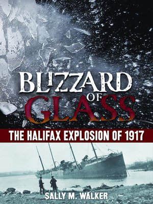 Cover of Blizzard of Glass