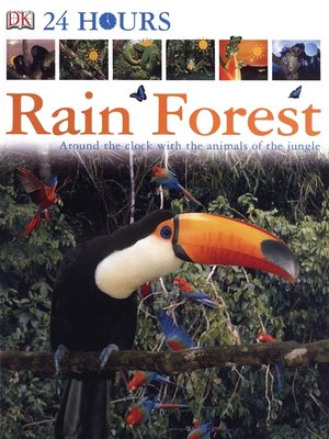Click this cover for a(n) eBook sample of Rain Forest.