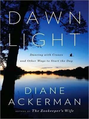 Click this cover for a(n) Audiobook sample of Dawn Light.