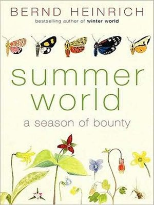 Click this cover for a(n) Audiobook sample of Summer World.