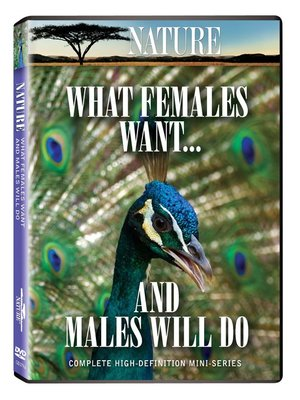 What Females Want... and Males Will Do