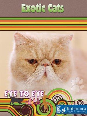 软萌可爱猫咪竖屏封面