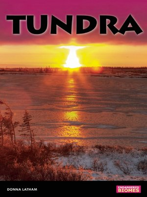 Click this cover for a(n) eBook sample of Tundra.