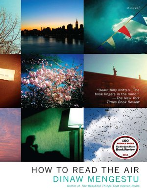 Click this cover for a(n) eBook sample of How to Read the Air.