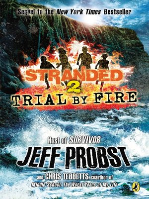 Click this cover for a(n) eBook sample of Trial by Fire.