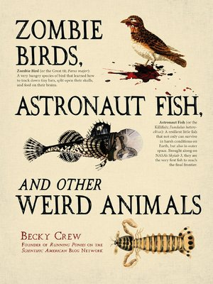 Click this cover for a(n) eBook sample of Zombie Birds, Astronaut Fish, and Other Weird Animals