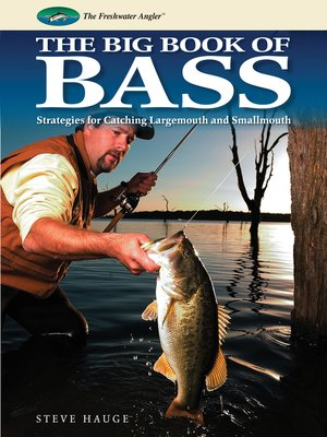 Cover of Big Book of Bass