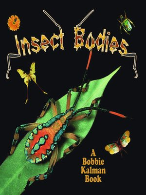 Click this cover for a(n) eBook sample of Insect Bodies
