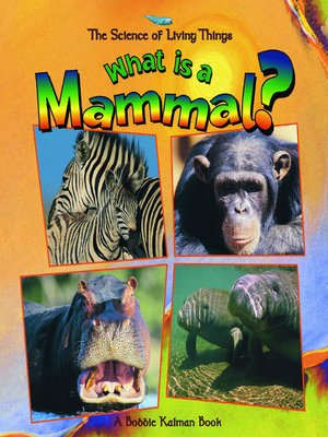 Click this cover for a(n) eBook sample of What is a Mammal?