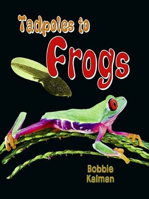 Cover of Tadpoles to Frogs
