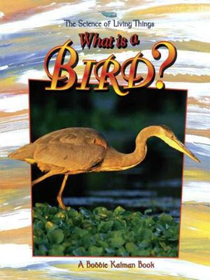 Click this cover for a(n) eBook sample of What is a Bird?.