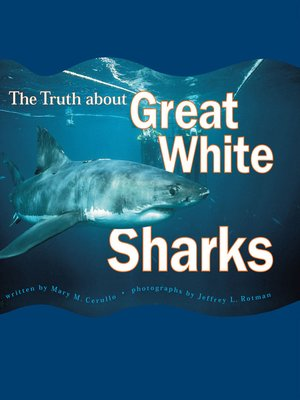 The Truth About Great White Sharks