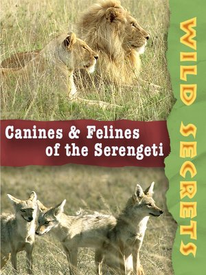 Canines and Felines of the Serengeti