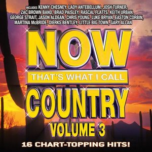 Now That's What I Call Country Volume 3