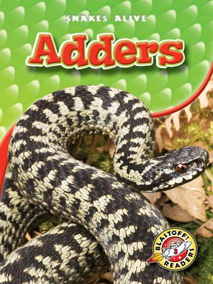 Cover of Adders