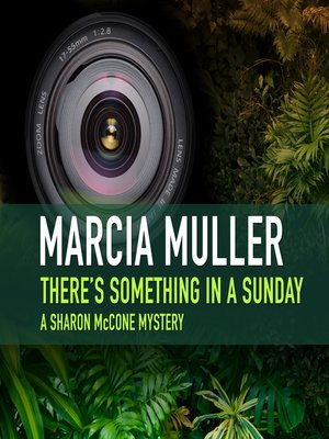 Cover of There's Something in a Sunday