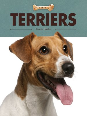 Click this cover for a(n) eBook sample of Terriers