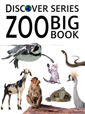Zoo Big Book