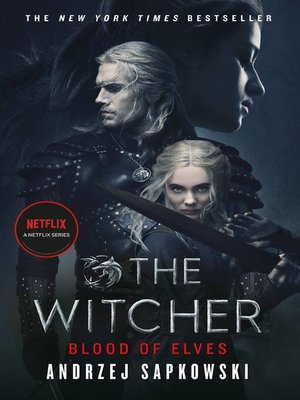 the witcher the last wish epub