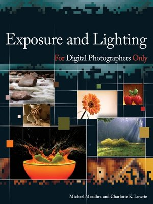 Exposure And Lighting For Digital Photographers Only By Michael Meadhra Ove