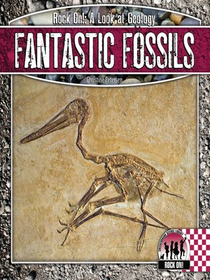 fossils at a glance pdf